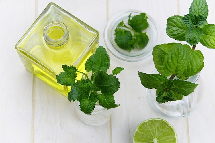 Peppermint Essential Oil: Complete Benefits & Uses Guide