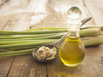 Lemongrass Essential Oil: Complete Benefits & Uses Guide