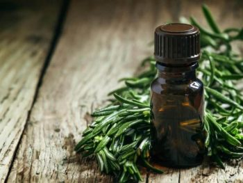 Tea Tree Essential Oil: Complete Benefits & Uses Guide