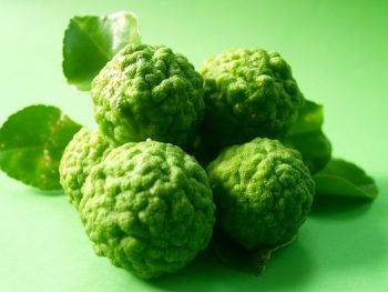 Bergamot Essential Oil: Complete Benefits & Uses Guide