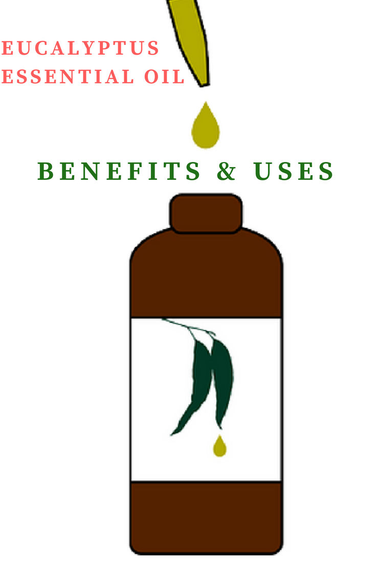 Eucalyptus Essential Oil: Benefits, Uses, & Best Company To Buy From | Madewithoils.com