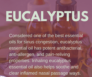 Eucalyptus Oil for Sinus