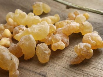 Frankincense Essential Oil: Complete Benefits & Uses Guide