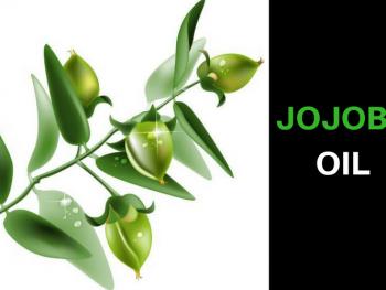 Jojoba Oil Uses For Beautiful Skin, Hair, & Health Benefits