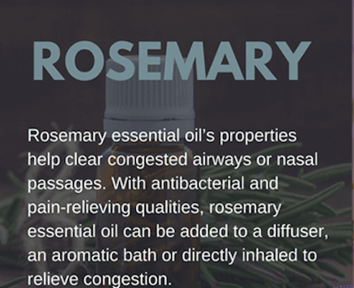 Rosemary Oil for Colds