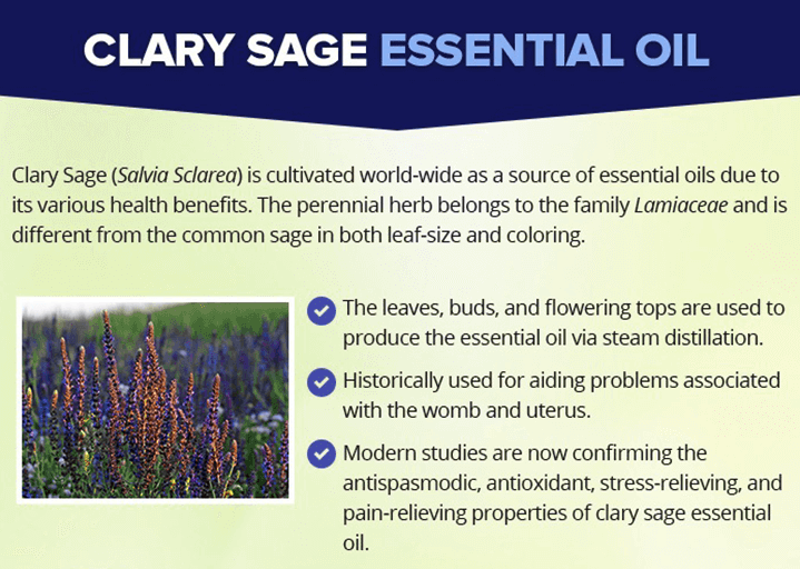 What is Clary Sage Oil
