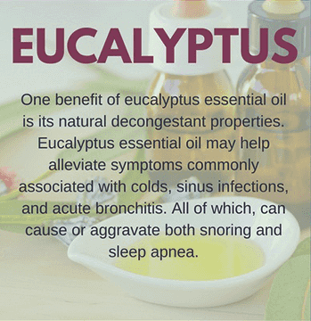 Eucalyptus Oil for Snoring