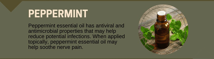 Peppermint Oil for Toothaches