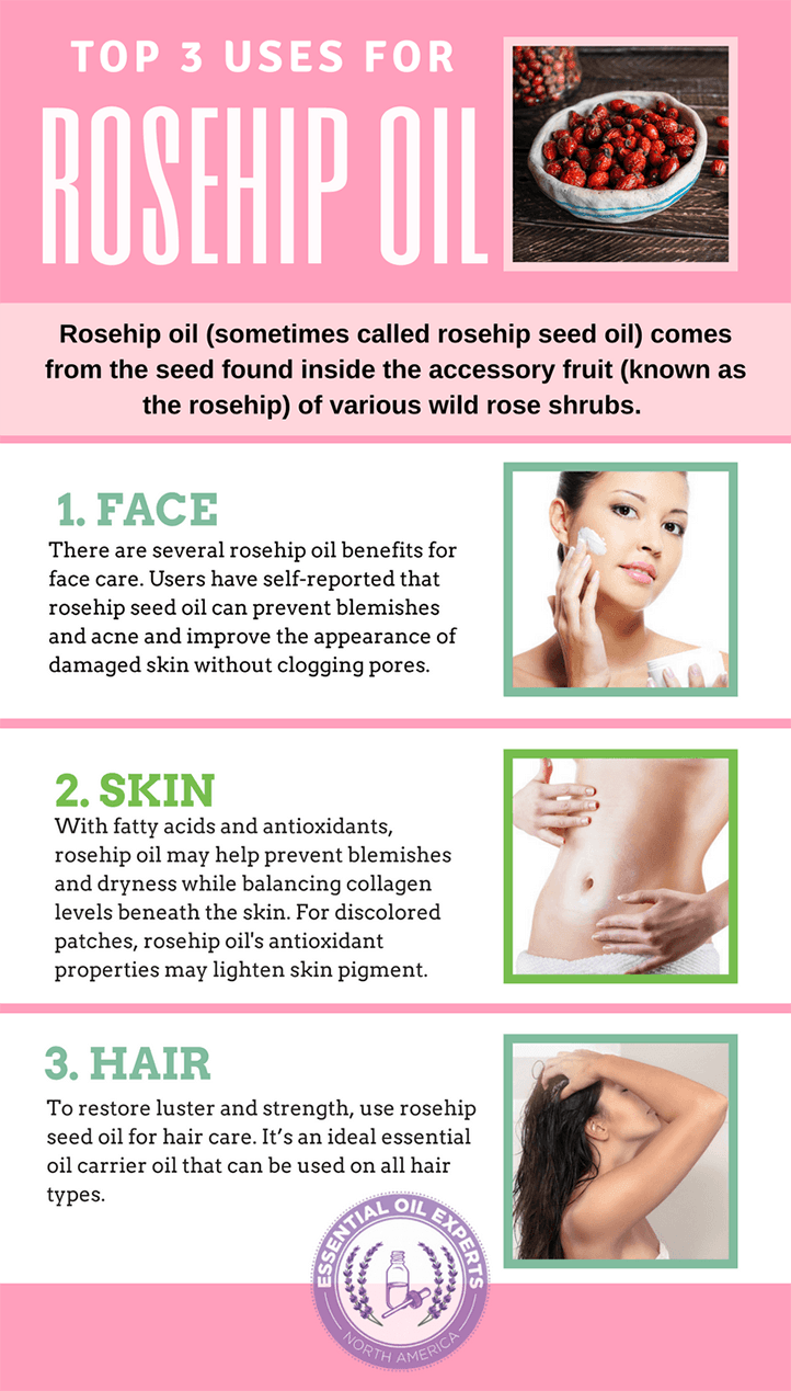 Learn why you should start using rosehip oil on your skin, face, & hair | MadeWithOils.com