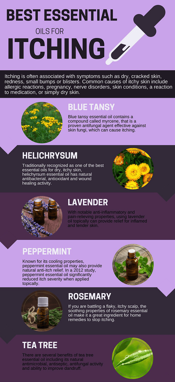 Can't get rid of an itch? Try these essential oils | MadeWithOils.com