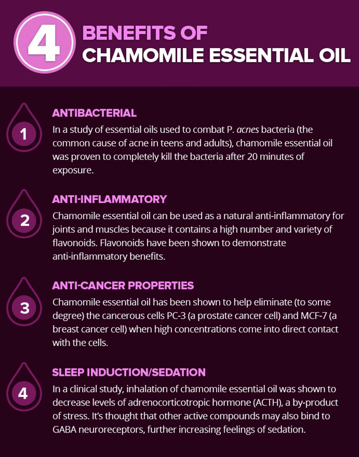 Chamomile Oil Benefits