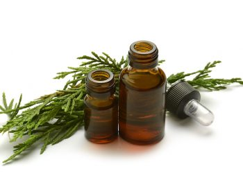 15 Remarkable Cypress Essential Oil Benefits & Uses to Jumpstart Your Health