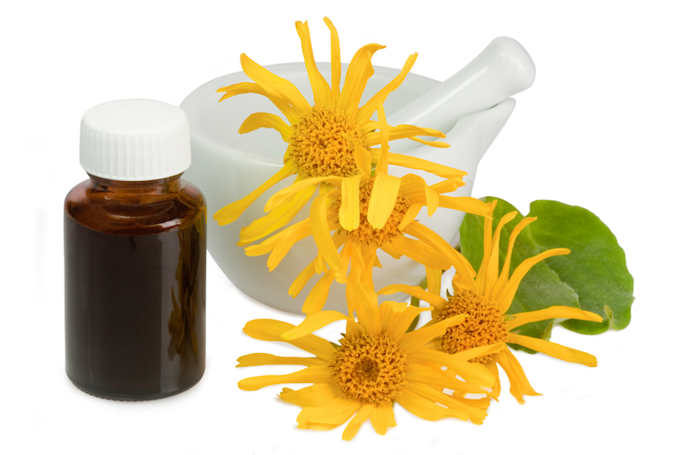 10 Ways Arnica Oil Helps With Pain, Inflammation & Bruising (+ arthritis)