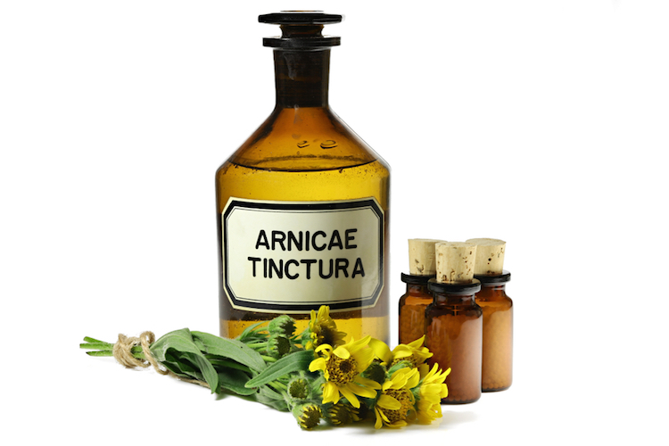 Arnica Oil Uses